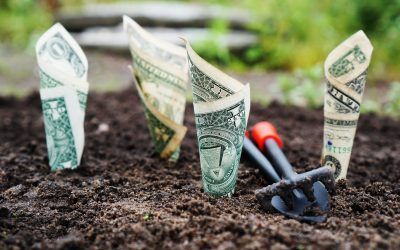 How To Grow Your Small Business Without Spending A Lot